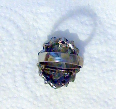 ring back view